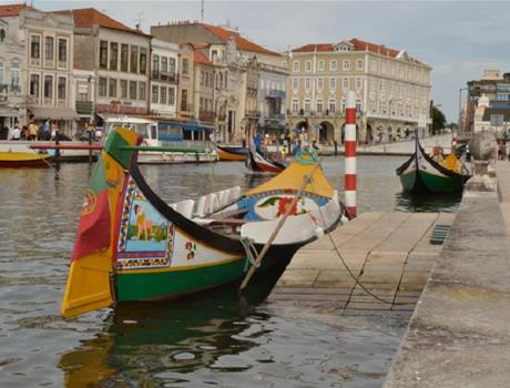 Aveiro & Costa Nova Half Day Tour from Porto