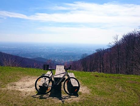 Bear Mountain Bike Adventure from Zagreb
