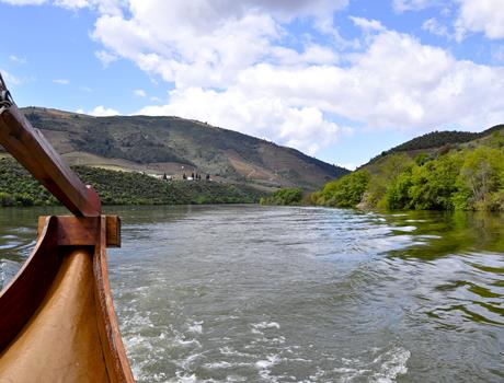 Wine Tasting and River Cruise in Douro Valley from Porto