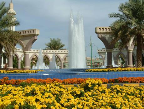 Al Ain: Full Day Tour with Lunch  from Abu Dhabi
