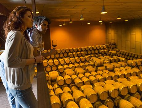 Small-Group VIP: Wine and Cava Tasting Tour from Barcelona