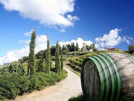 Excursion to Chianti & Brunello from San Gimignano