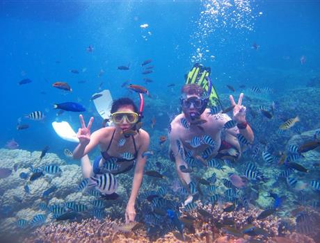 Full day Snorkeling tour with BBQ in Fujairah from Dubai