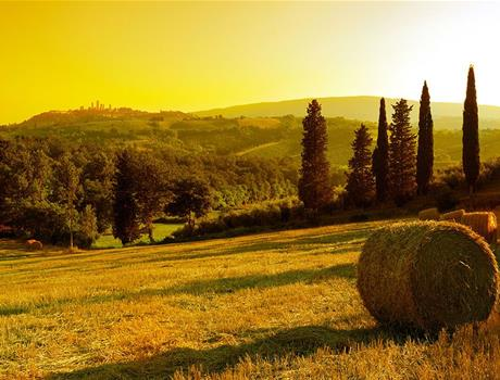 Trip to Chianti & Castles from San Gimignano