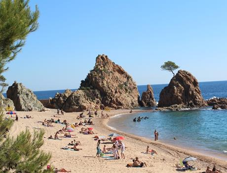 Half-Day Tour to Costa Brava from Barcelona