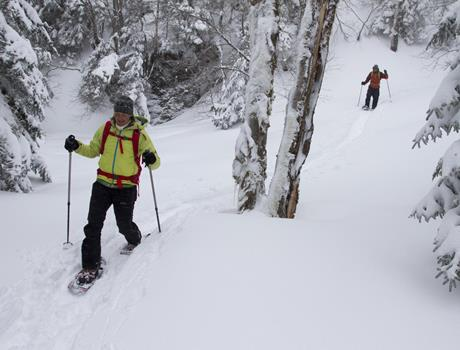 Hiking with Snowshoes on Vitosha Mountain from Sofia