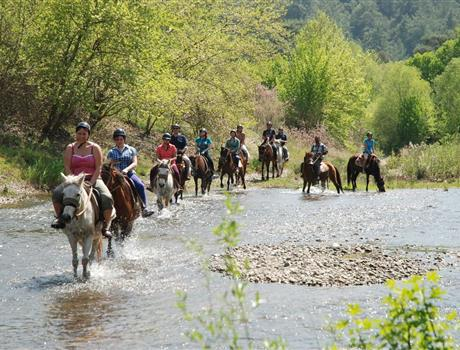 Horse Riding Experience in Bodrum