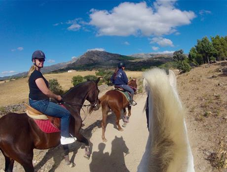 Horse Riding from Madrid
