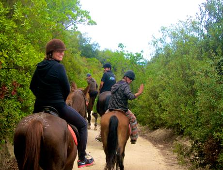 Private Horse Riding in Natural Park Tour from Barcelona