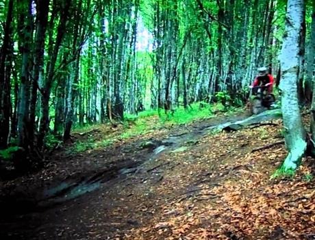 Mountain Biking in Vitosha Tour from Sofia