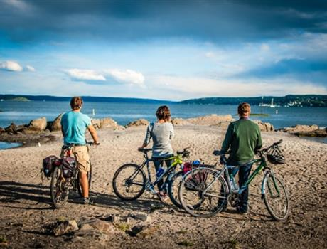 Oslo: Viking & Beaches Bike Tour