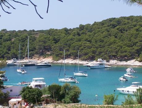 Private Tour: Hvar & Pakleni Island from Split or Trogir