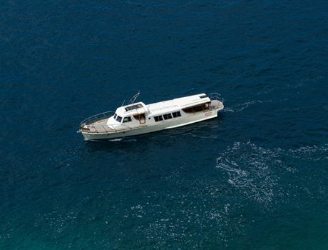 Private Tour by Boat Lafodia from Dubrovnik (for up to 28 people)