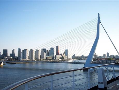 Rotterdam Sightseeing: Private Walking Tour & Harbor Cruise