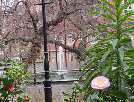 Tour of Secret gardens in London
