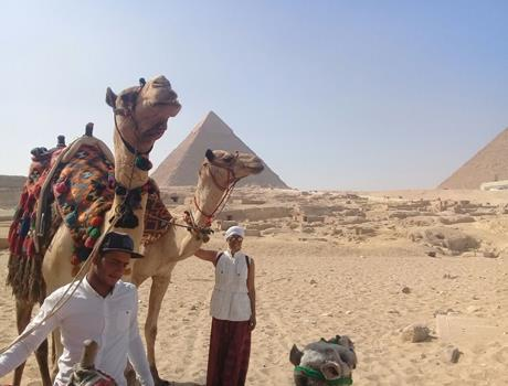 Full day tour to Giza Pyramids and Egyptian museum from Cairo or Giza