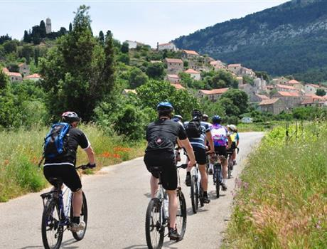 Cycling lunch and wine tasting in Hvar