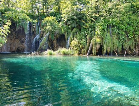 Plitvice Lakes National Park from Zadar Full Day Tour