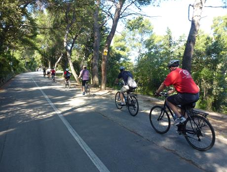 Bike tour: Amazing Split in the Afternoon