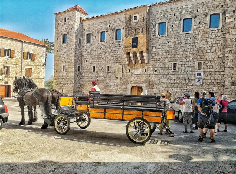 Authentic Wine Tasting Tour from Split