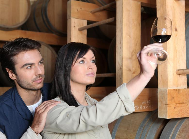 Complement yourself with Wine Tasting and Winery Tours