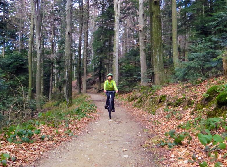 Bear Mountain Bike Adventure From Zagreb Zagreb