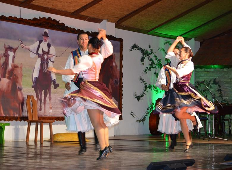 Budapest by Night Tour with Dinner & Folklore Show