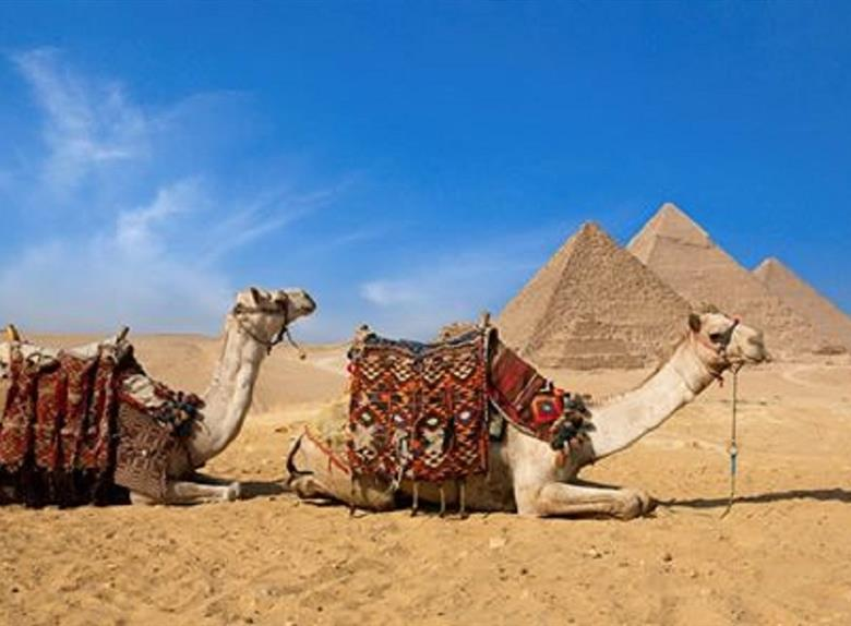 camel ride trip at the open desert of giza pyramids from