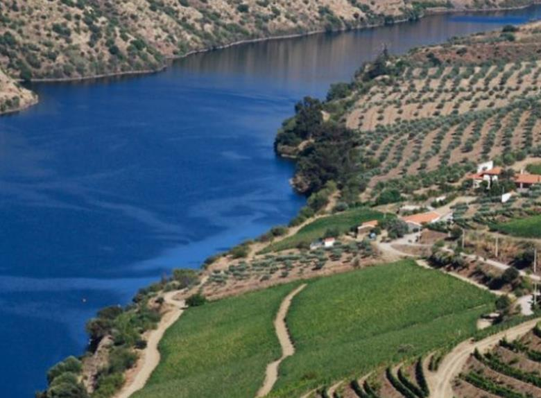 Douro Full Day Tour from Porto