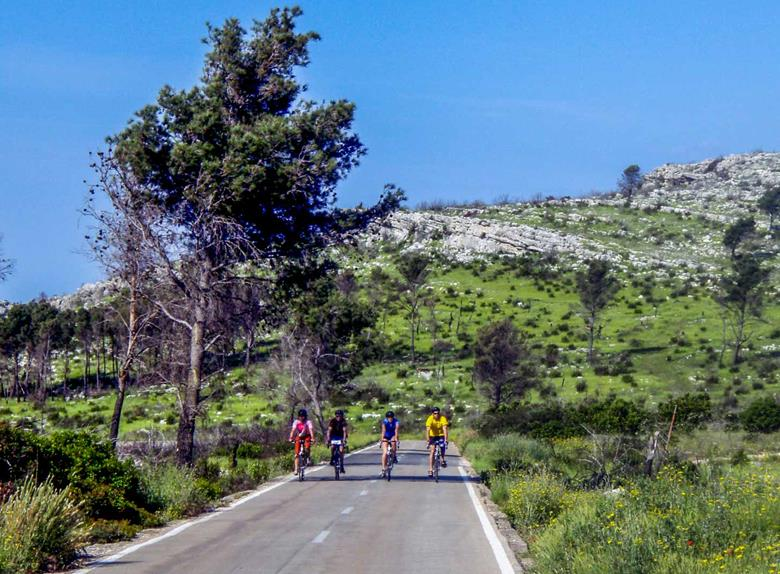 Full Day E-Cycling Circuit to National Park Krka from Skradin