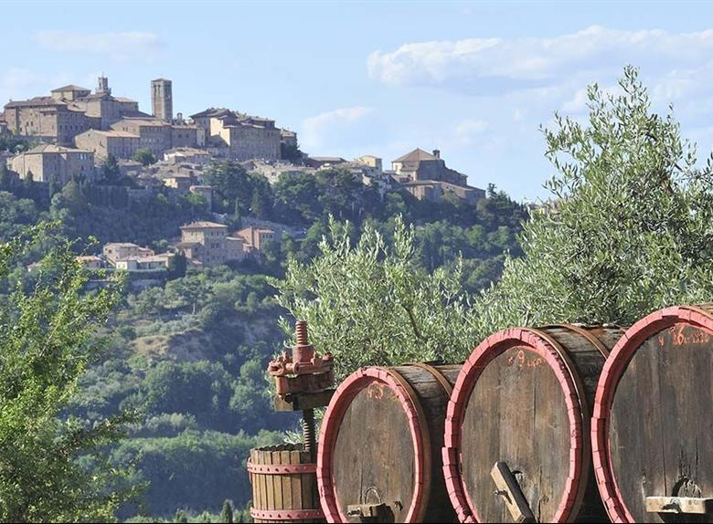 Wine tasting in Montalcino and Montepulciano