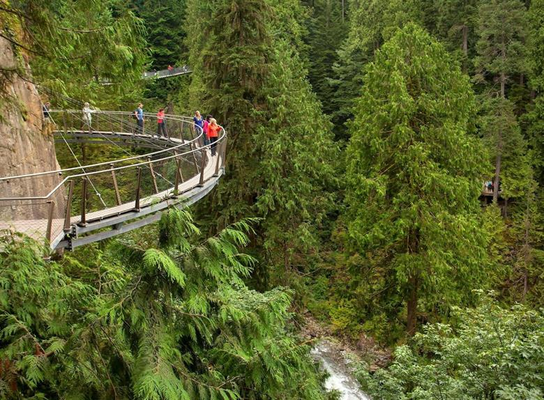 Grouse Mountain and Capilano Suspension Bridge Park Tour in Vancouver