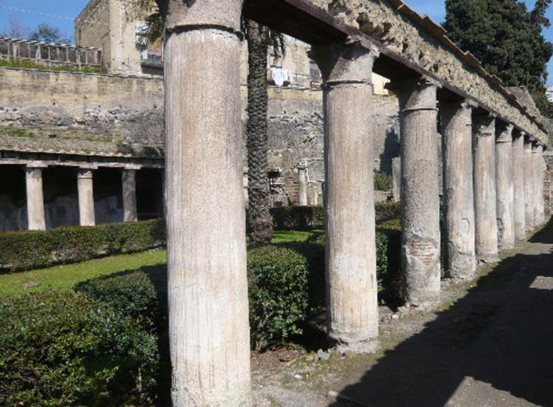 Herculaneum Ruins Private Half-Day Tour from Naples