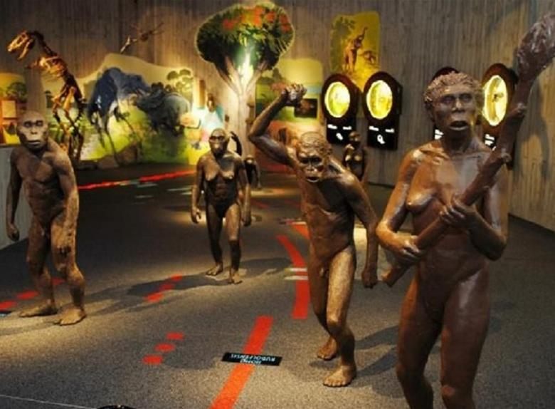 Visit Krapina and explore the Krapina Neanderthal Museum