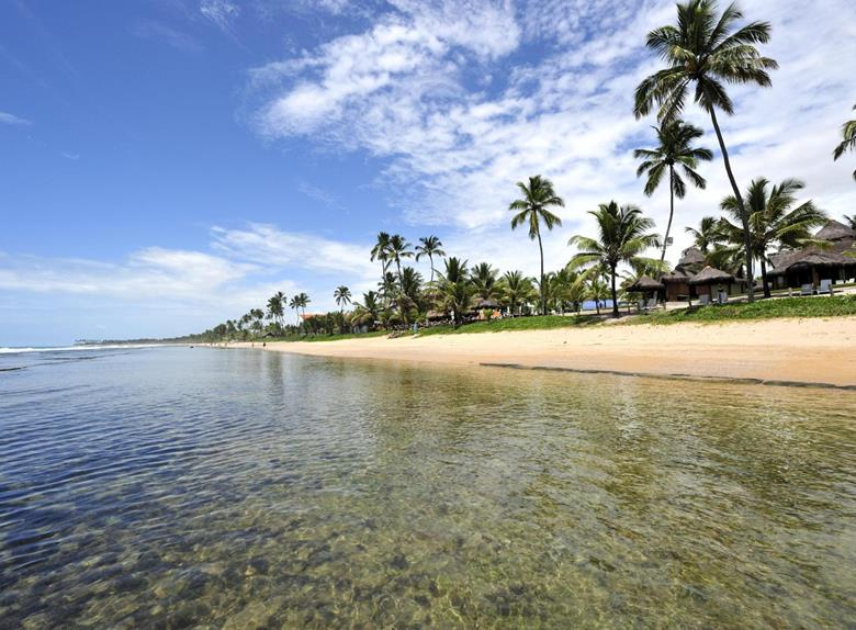 Private Tour Porto de Galinhas from Recife