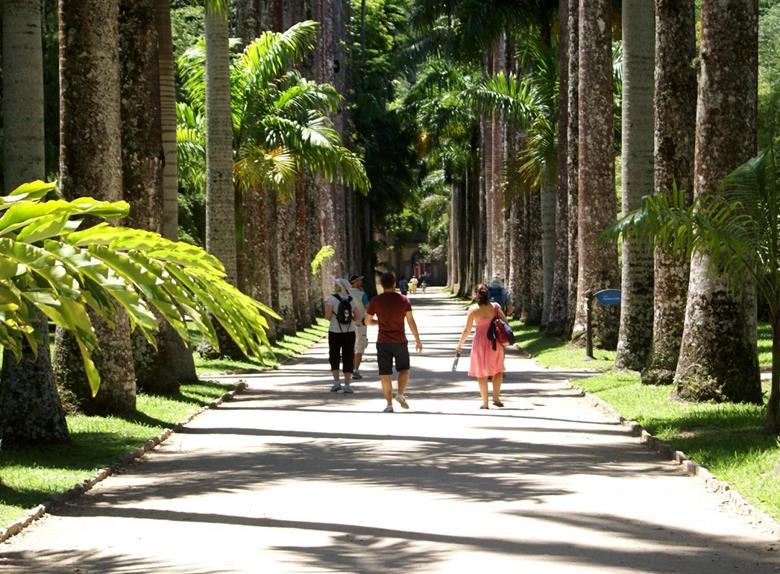 Rio Botanical Garden Tour
