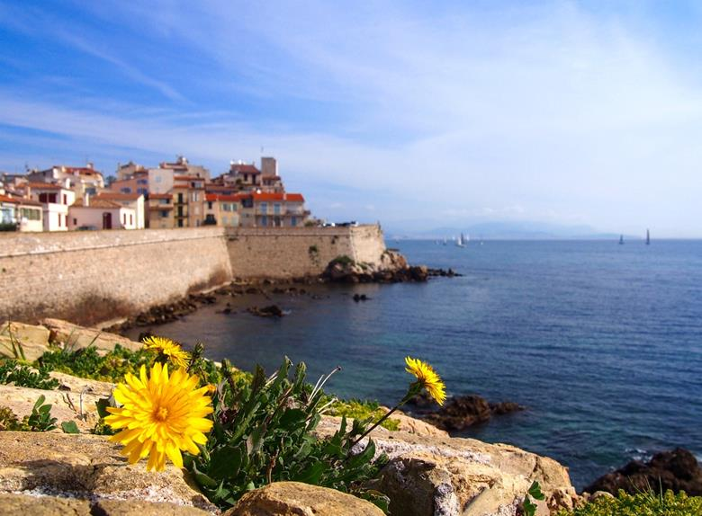 Bus Trip to Antibes, Grasse, Cannes & Gourdon from Nice