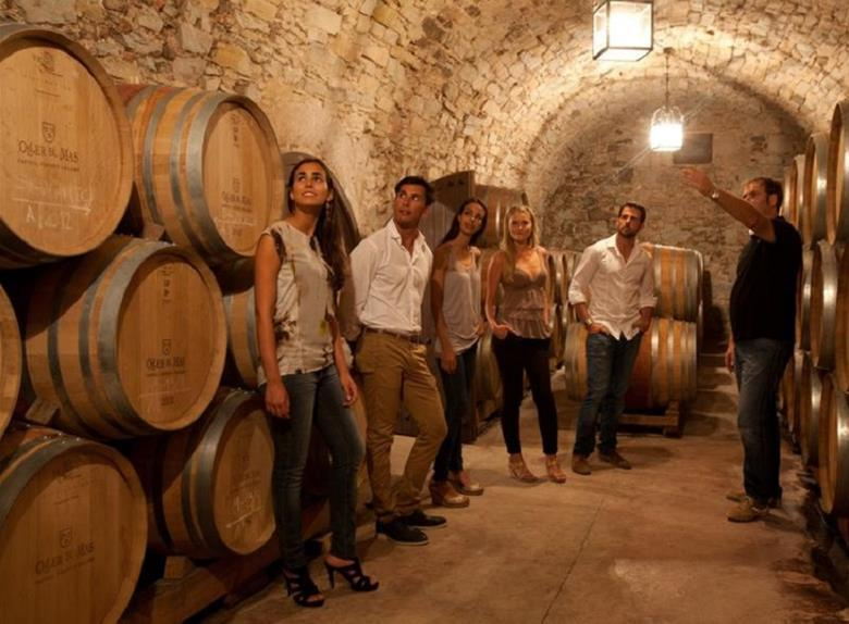 Wine, Cava & Tapas Tour from Barcelona