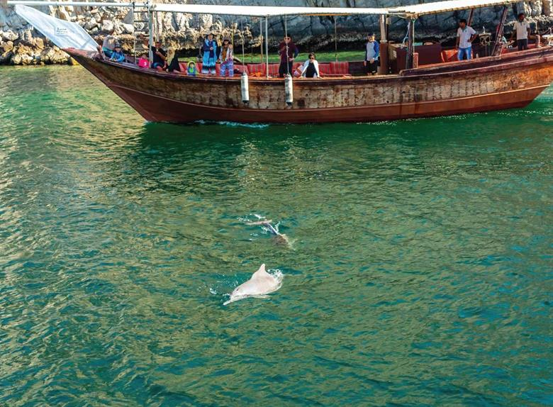 2 hours Dolphin Watching Tour in Muscat