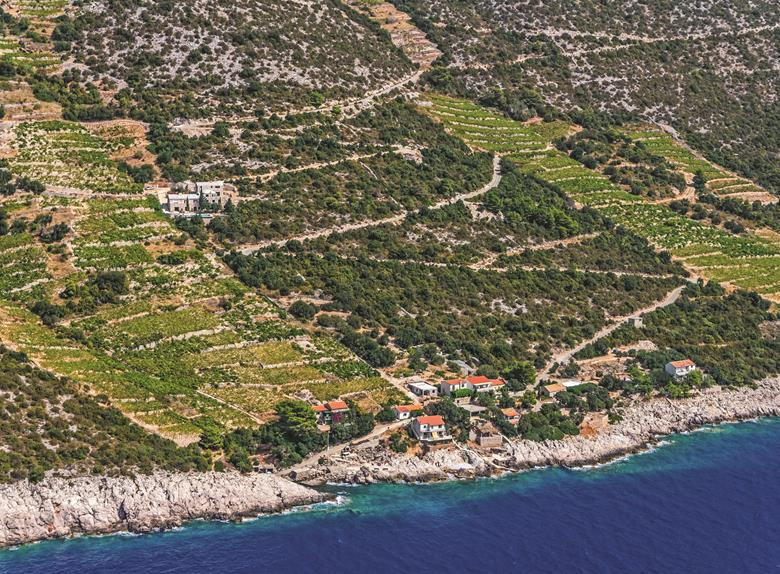 Private Tour: Pelješac Wine Tour from Dubrovnik