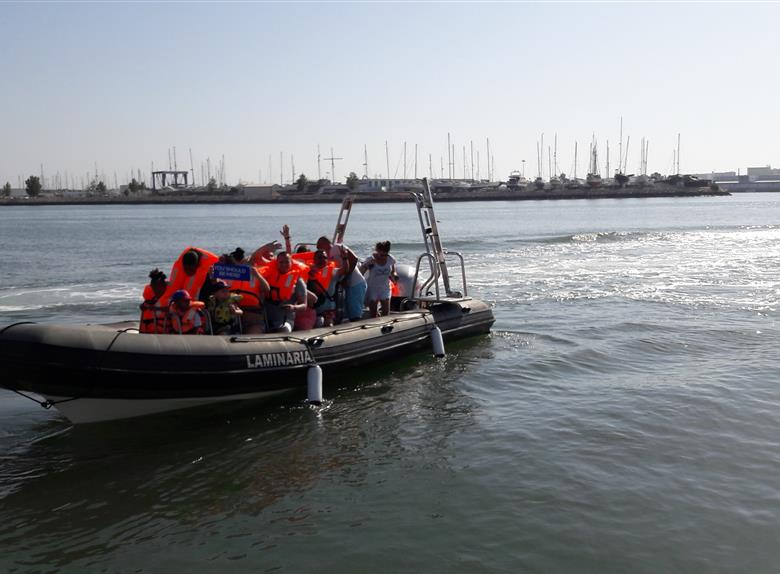 2 Hour Speedboat Tour to Benagil Caves from Portimao